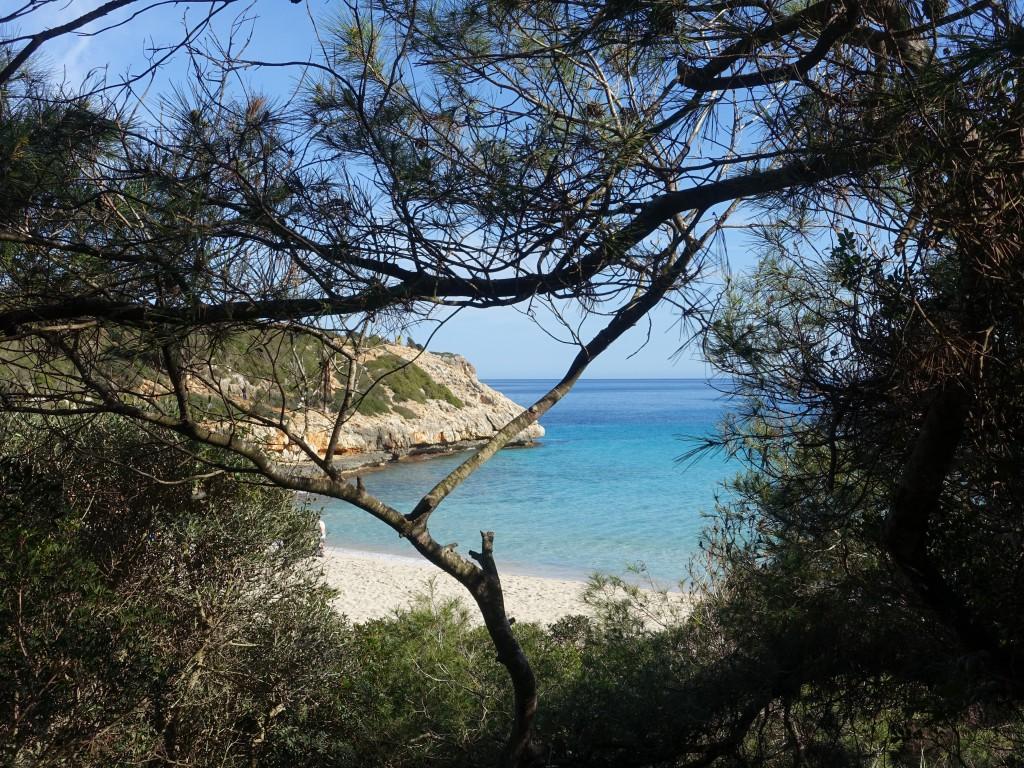 Cala Barques im Januar